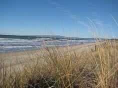 Pajaro Dunes Beach, Watsonville, CA Moss Landing, Beautiful Vacation Spots, Monterey Bay, California Love, Travel Memories, Dream Life, Day Trips, Places Ive Been, Beaches