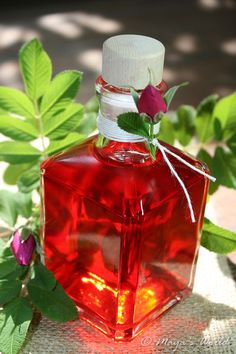 Otet de trandafiri Meals In A Jar, Dessert Drinks, Canning Recipes, Drinking Tea, Feng Shui, Pickles, Crafts For Kids, Perfume Bottles, Food And Drink