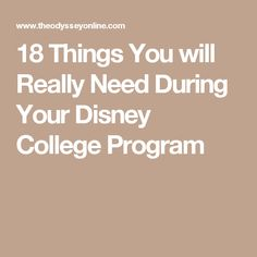 18 Things You will Really Need During Your Disney College Program