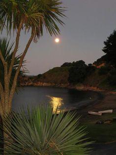 Waiwurrie Coastal Farm Lodge, Northland, New Zealand New Zealand Houses, Kiwiana, South Island, Small Island, White Sand Beach, Heaven On Earth, Albania, Heavens, Html