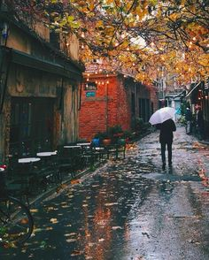 Autumn rain tube suche videos