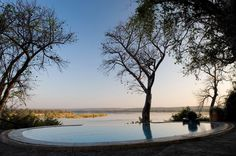 The pool at The River Club on Zambia's Zambezi River seems part of the river itself, while a secluded deck provides respite - beauty treatments are available in the Wellness Centre. Wildlife Safari, Crystal Clear Water, Tour Operator, African Safari, Camps, Kenya, Wilderness, Pools, Centre