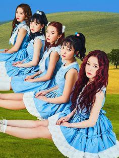 Red Velvet Rookie - Wendy - Yeri - Irene - Seulgi - Joy