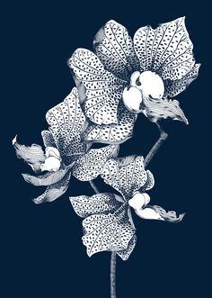 Wild Flowers #1 - Suthipa Kamyam
