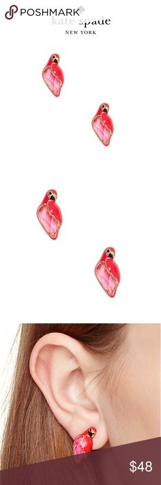 Kate Spade Earrings NWT. Out off office parrot earrings kate spade Jewelry Earrings