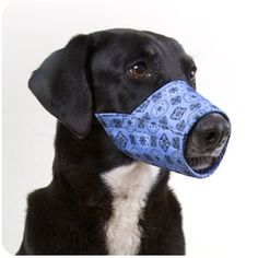 Blue Bandana Fabric by Happy Muzzle
