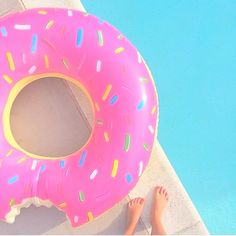 pool float swan tumblr - Google Search