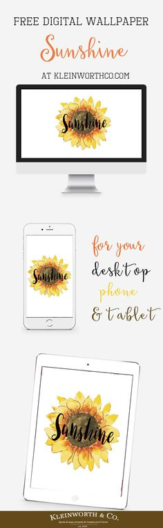 Sunshine Digital Wal