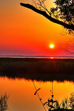 Sunrise Roanoke Island by Bill Gracey ~ Roanoke Island, North Carolina* Beautiful World, Beautiful Places, Beautiful Pictures, Beautiful Scenery, Amazing Places, Roanoke Island, Beautiful Sunrise, Nature Pictures, Amazing Nature