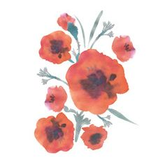 Naive and Ditsy Watercolor Poppies Placement