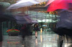 fast umbrellas