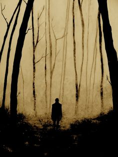 quite eerie. quite eerie, indeed. The Darkness, Arte Horror, Dark Forest, Dark Art, Enchanted, Scary, Creepy Horror, Creepy Art, Illustration