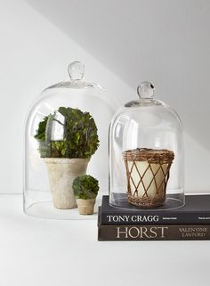 Protect keepsakes or display sweets under the cover of a cloche. They also make a great decorative accent; here, a preserved boxwood balls and a scented candle sit under the cover of these glass bell jars.