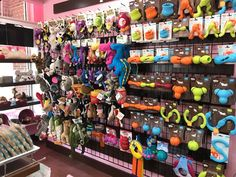 Need some new toys for your furry children? Stop by Woof Gang Bakery Chapel Hill, we only keep the best in premium pet products in stock! Pet Food Store, Pet Store, Dog Grooming Business, Chapel Hill, New Toys, Pet Products, Stocking Stuffers, North Carolina, Bakery