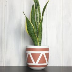 Common House Studio offers a wide selection of modern planters for your home. Designed in the heart of Niagara, our lightweight planter pots are made from the highest quality materials and are hand painted to order. Each and every planter is unique. Painted Plant Pots, Painted Flower Pots, Diy Planters, Indoor Planters, Recycled Planters, Tall Planters, Modern Planters, Succulent Planters, Plants Indoor