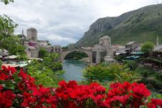 Good morning from Mostar. Visit our website: www.tourguidemostar.com  #travel #travelworld #architecture #mosque #tourguidemostar #unesco #worldheritage #bosniaandherzegovina #placestogo #history #starimost #oldbridge #travelblog #mostar #flowers
