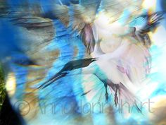 """""""White Seagull Dance"""" from the series """"CrystalArt"""""""