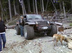 Tires?