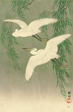 Japanese animal art, Two Egrets Two Egrets and Willow Tree by Ohara Koson (Shoson) - Japanese Animals, Japanese Bird, Japanese Prints, Japanese Style, Japanese Drawing, Japanese Painting, Woodblock Print, Ohara Koson, Art Chinois