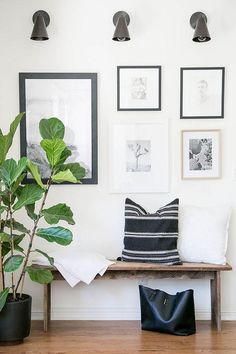 Entryway unfinished wood bench topped with black and white striped and patterned African mudcloth pillows, a potted indoor fiddle leaf fig in a midcentury black ceramic planter, blackened bronze conical wall sconces, and a gallery wall of black and white prints, drawings, and photographs on the wall behind.