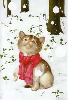 Makoto Miramatsu cat in snow