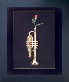 This beautiful Trumpet with rose musical instrument art print framed poster from Impact Posters Gallery deserves a space at your home. It will be a great addition to your home decor especially for music lovers. Your guests will definitely compliment you for your excellent taste. Its wooden espresso frame accentuates the poster mild tone. The frame is made from solid wood measuring 20x24 inches with a smooth gesso finish. This framed poster includes a wire hanger on the back for easy display.