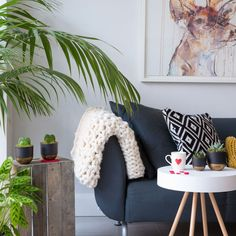 Mis and match big and small house plants to create a softer space. Making the interior of your home more green adds so many benefits including improved air quality and more productive spaces! Succulents Online, Gifts For Family, Houseplants, Bean Bag Chair, Improve Yourself, Floral Design, Indoor, Throw Pillows, Spaces