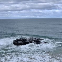 @IzzyGosper #waves #ocean Whale, Ocean, Animals, Outdoor, Animais, Outdoors, Whales, Animales, Animaux