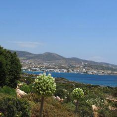 "Elegance , [br] [caption align=""aligncenter"" The View, Makria Miti, Paros[/caption] [caption align. Greek Decor, Hot Spots, Paros, Mediterranean Sea, Luxury Villa, Hotel Reviews, Caption, Travel Tips, Island"