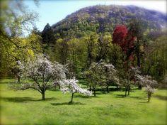 Four Seasons at the Chateau — Chateau de Gudanes