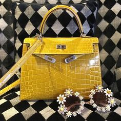 Wonderful Alligator HERMÈS Kelly Bag & Dolce Gabbana Sunglasses