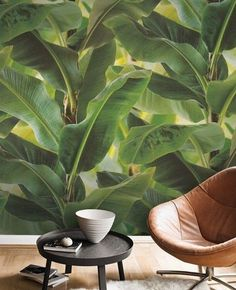 Tapete Piesang | Wandgestaltung mit Tapete kann auch schön sein | Pflanzentape | grüne Tapete