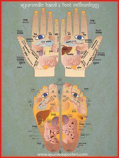 Hand and Foot Reflexology Poster