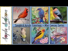 "Songbird Mini Canvas Series LIVE Acrylic Painting Tutorial ""Bullfinch"" Angela Anderson"