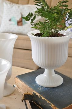 I have this same piece of milkglass... love the idea of using it as a planter!