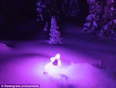 Afterglow video shows ski suits with 7,000 LED lights on the snow | Daily Mail Online