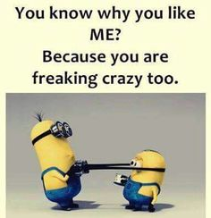 You're freaking crazy too Evil Minions, Minions Love, Minions Despicable Me, Minion Humor, Minion Stuff, Purple Minions, Funny Minion, Epic Texts, Funny Texts