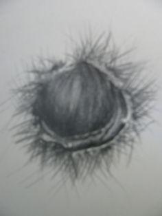 desenho49