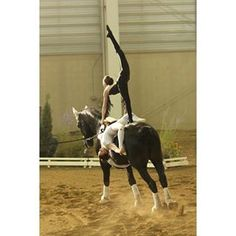 US Equestrian Vaulting (@usavaulting) | Instagram photos and videos