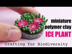 Today, I'm showing how to sculpt the Ice Plant. This plant is so beautiful, that many people want to have it at home. What they don't know is that if this pl...