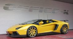 Lamborghini Aventador Roadster by Novirec Torado. Lamborghini Aventador Roadster, Lamborghini Photos, Ferrari Car, Convertible, Dream Car Garage, Fancy Cars, Best Classic Cars, Car Brands, Automotive Design