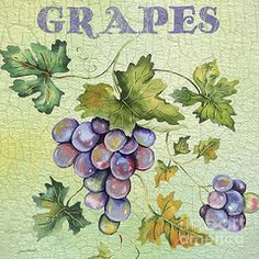 Featured Art - Grapes on Watercolor  by Jean Plout