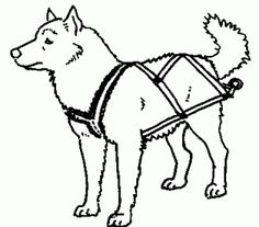 how to make a pulling harness for your dog a bit of reading, but on different dog harnesses