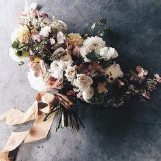 49 Popular Country Elegance Weddings Images Hydrangea Hydrangea