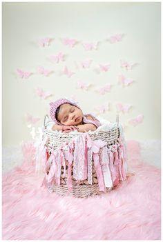 Newborn Baby girl photography pink butterflies