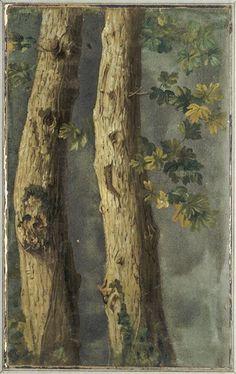 Alexandre-FrançoisDesportes (Fr. 1661-1743),Deux troncs d'arbres avec feuillages et branche de lierre, 46,5 x 29cm,Sèvres, C...