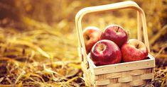 Народный праздник Яблочный спас любим многими. Calendar, Spa, Apple, Fruit, Food, Apple Fruit, Essen, Meals, Life Planner