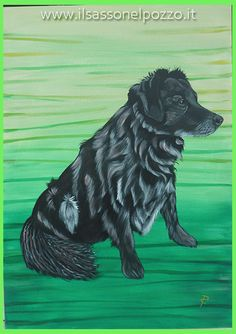 Ritratto di MIrtillo. Dipinto acrilico su pannello telato 50x70 cm