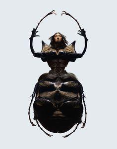 Insectes di Laurent Seroussi