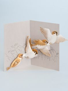 Tree sparrow pop-up card http://www.papermash.co.uk/collections/new